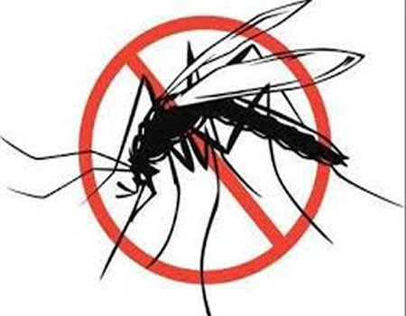 Malaria: Expert tasks residents on clean environment