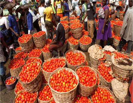 Six containers of 'poisonous' tomato paste from Iran arrive Nigerian ports
