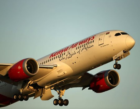 Stowaway Falls Into London Garden From Kenya Airways Plane