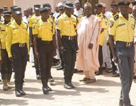 Kano road traffic agency impounds drugs-laden worth N7million