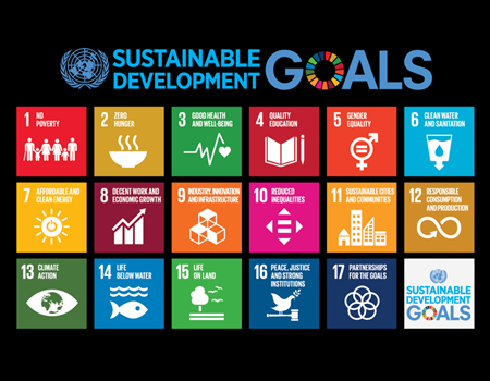 Sustainable Development Goals and 2030 actualisation in Nigeria