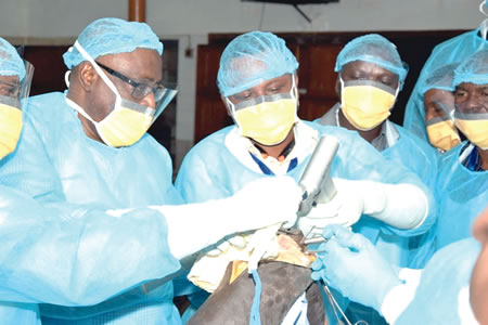 20-year-old sickle cell patient, other five benefits from hip, knee joint replacement at UCH – Health – Tribune Online