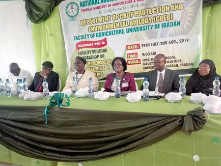 NASC to wage war against adulterated seeds » Agriculture » Tribune Online